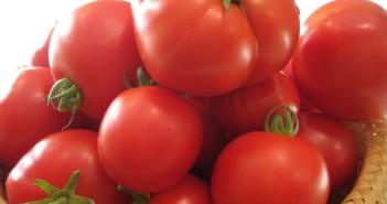 Rajčata přirozeně posilují imunitní systém organismu.