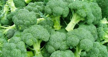 Brokolice obsahuje životně důležité látky pro kosti a svaly.